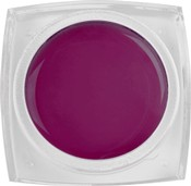 Naglar Color Gel  Palermo - 15 gram