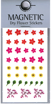 Naglar Magnetic Dry Flower Sticker - 001
