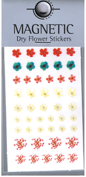 Naglar Magnetic Dry Flower Sticker - 006
